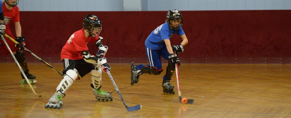 Teenage Roller Hockey League