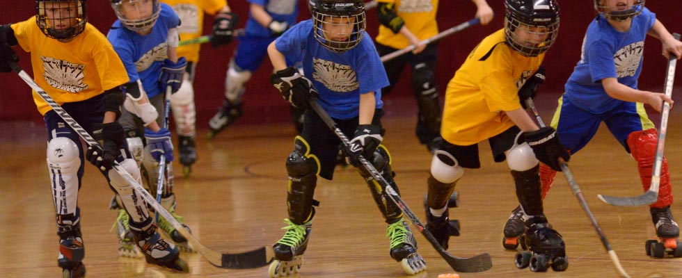 Youth Roller Hockey League Banner